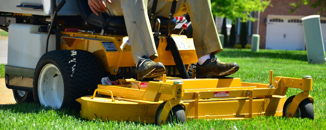 Landscape Maintenance for Your Business